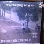 [Trộm xe đạp] Cưa đổ cây để lấy trộm xe đạp